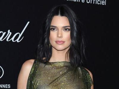 Yes, Kendall Jenner Is Aware You Can See Through Her Dress
