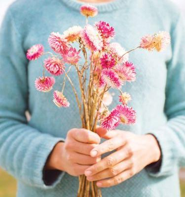 Nadia Lim's tips for drying flowers