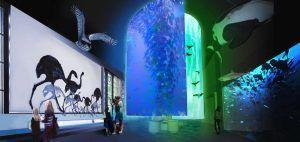 Te Papa to launch new exhibition zone
