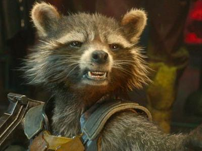 Rocket Raccoon Doesn't Care Too Much For Other Superheroes