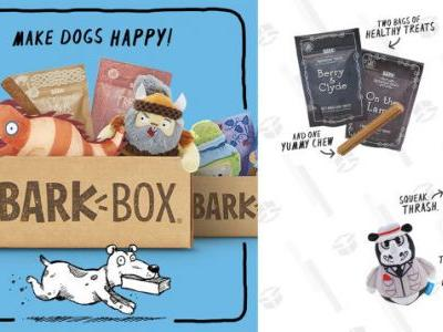 Make Your Dog's Day With an $18 BarkBox Monthly Subscription Box, Today Only