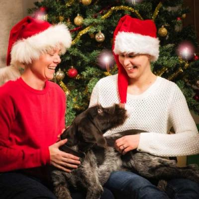 Dogs and Holiday Guests: How to Prepare Your Pup
