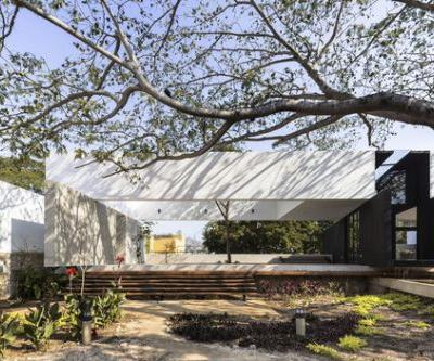 The Tree House / AS Arquitectura